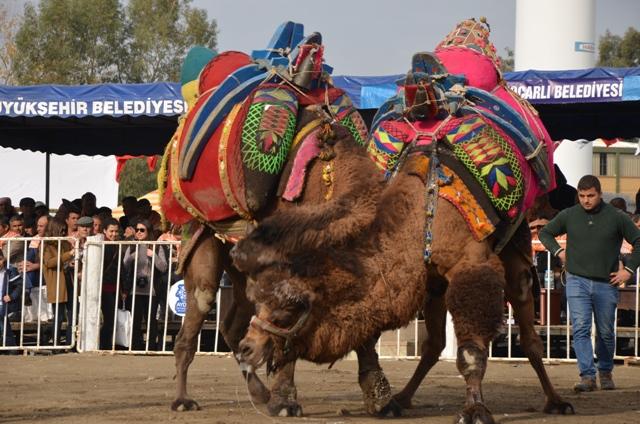 Türkiye'de Kasım ayında yapılacak renkli festivaller